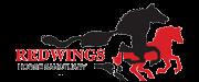 Redwings_Logo_1