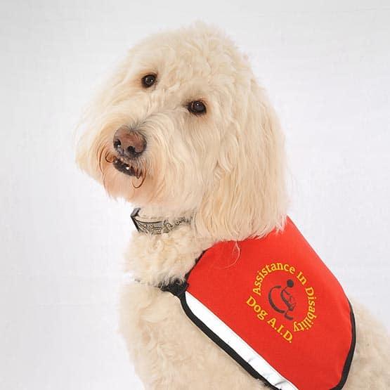 dog-aid_1